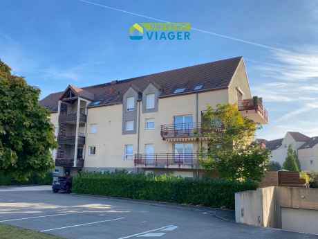 appartement-viager-occupe-a-chenove